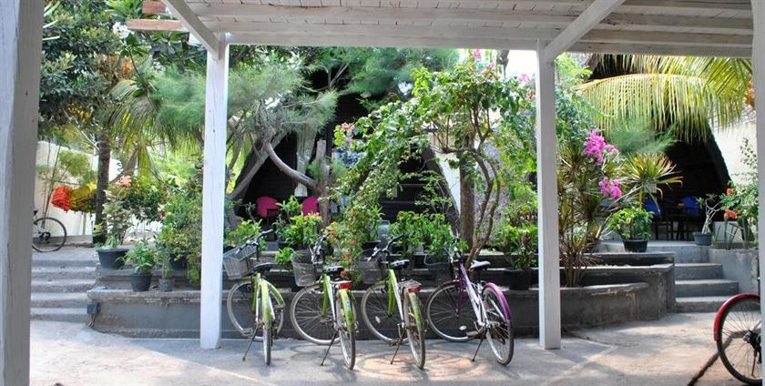 Ozzy Cottages And Bungalows Gili Part - 41: Ozzy Cottages Bungalows Lombok Compare Deals