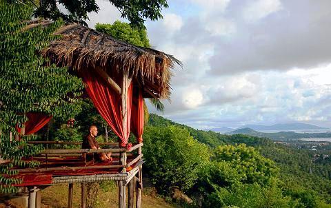 ג'ונגל קלאב צילום של הוטלס קומביינד - למטייל (2)