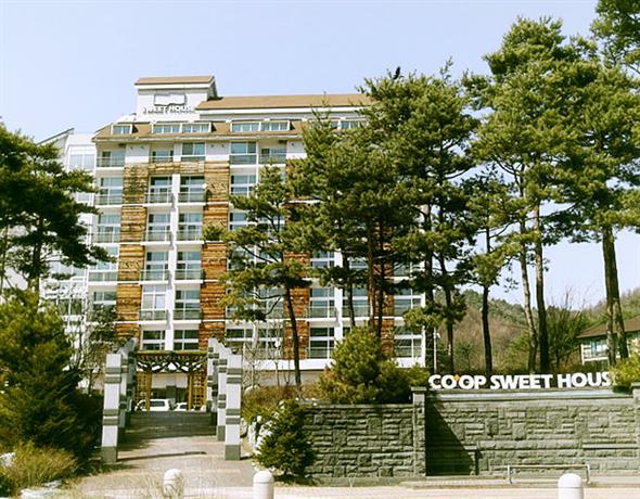 Coop Sweet House Pyeongchang