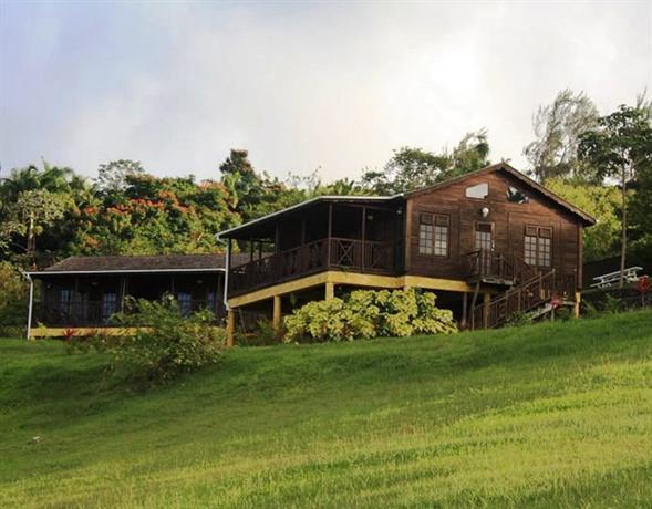 Lush Life Nature Resort