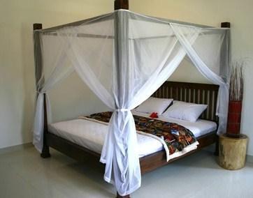 Villa Pandu North Bali