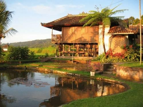 Puri lumbung cottages bali munduk compare deals for Cottage bali