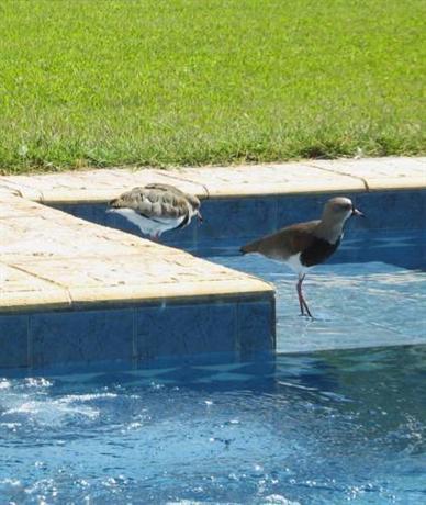 Posada de bouche a oreille san rafael comparez les offres - Oreille bouchee piscine ...