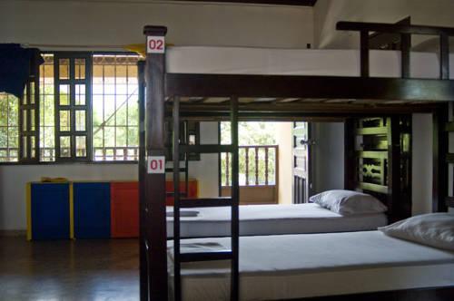 Drop Bear Hostel