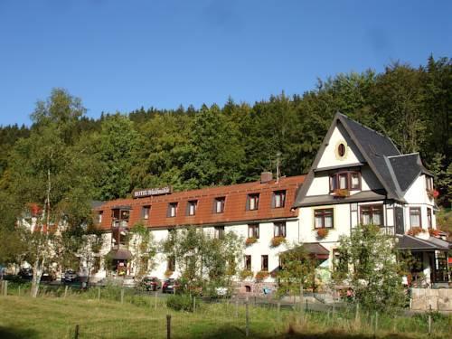 Hotel Waldmühle, Zella-Mehlis - Die günstigsten Angebote