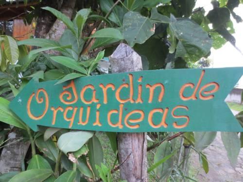Cabanas armonia y jardin de orquideas mindo compare deals for Jardines de orquideas