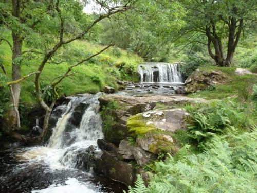 Talybont Bed And Breakfast Wales