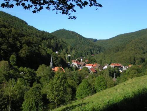 Harz Hotel Gunstig