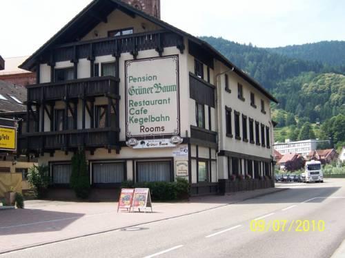 Hotels In Weisenbach Deutschland