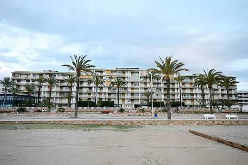 Cunit Palm Beach
