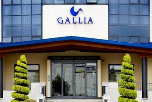 Hotel Gallia Pianezza