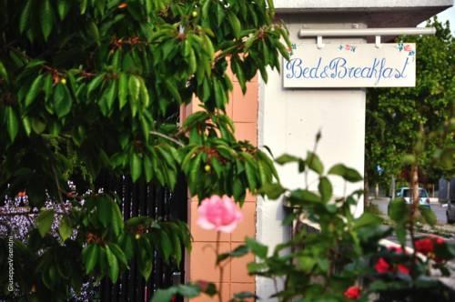 Casa dolce casa b b ruvo di puglia offerte in corso for Dolce casa di fuga