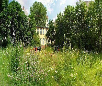 Bornholmer Hof im Prenzlauer Berg
