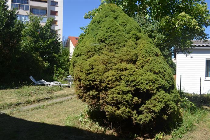 maison avec jardin 700m2 11 mn de paris aulnay sous bois