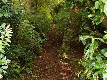 The Willows Upper Poppleton