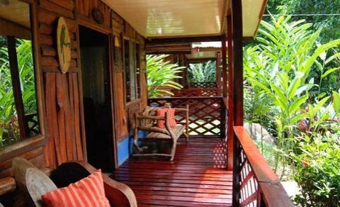 mehr Fotos Original gutes Geschäft Ara Ambigua Lodge, Puerto Viejo de Sarapiqui - Compare Deals