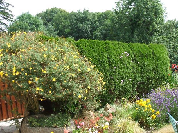 Maison avec jardin clos plouguiel compare deals for Jardin clos