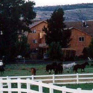 Rockin R Ranch Antimony
