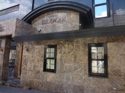 Hotel Bloom Mishima