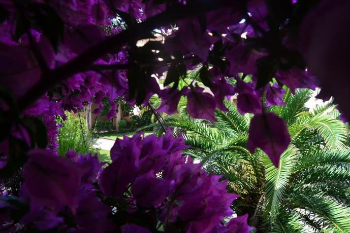 R sidence les pavillons du golfe sainte lucie de porto vecchio conca comparez les offres - Les jardins du golfe porto vecchio ...