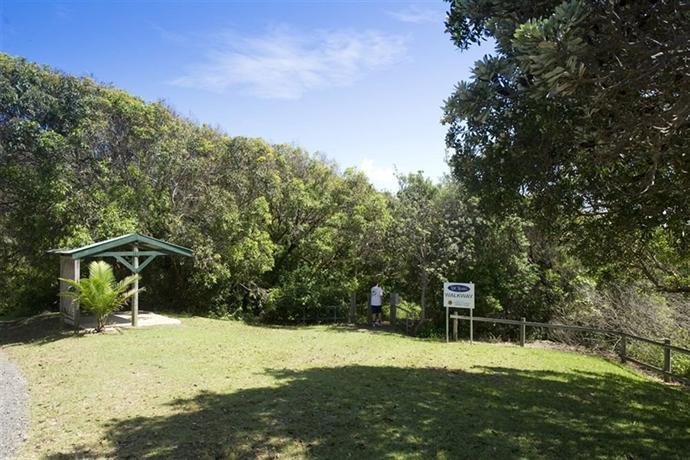 nambucca headland also sneak - photo #19