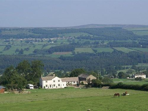 Capple Bank Farm Bed and Breakfast Leyburn