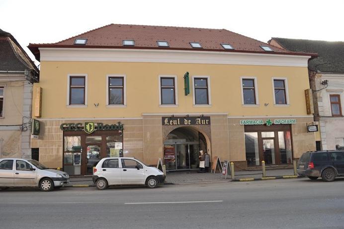 Hotel Leul de Aur