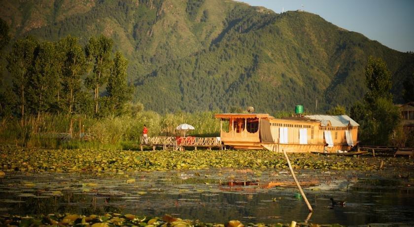 golden hopes group of houseboats  srinagar compare deals