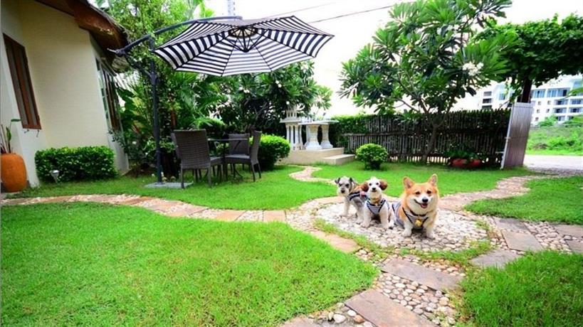 8 villas hua hin confronta le offerte for 8 villas hua hin