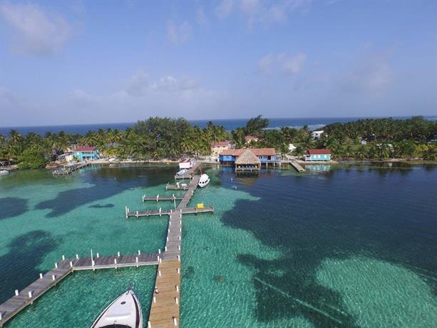 About Blue Marlin Beach Resort