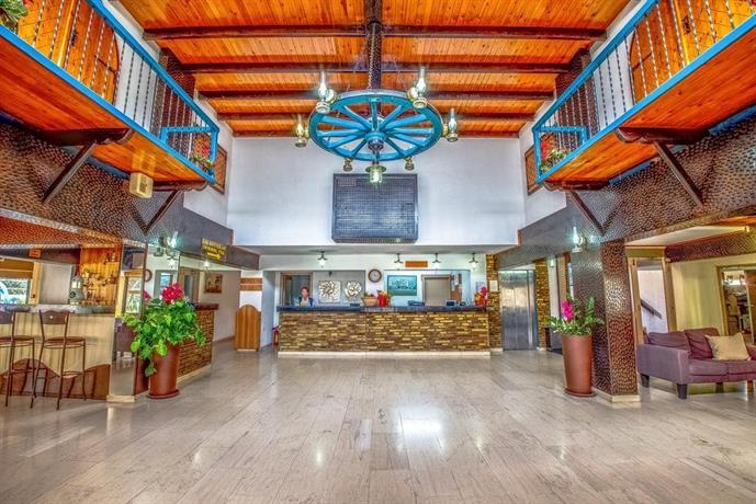 Cactus Hotel Cyprus - Reviews   Facebook