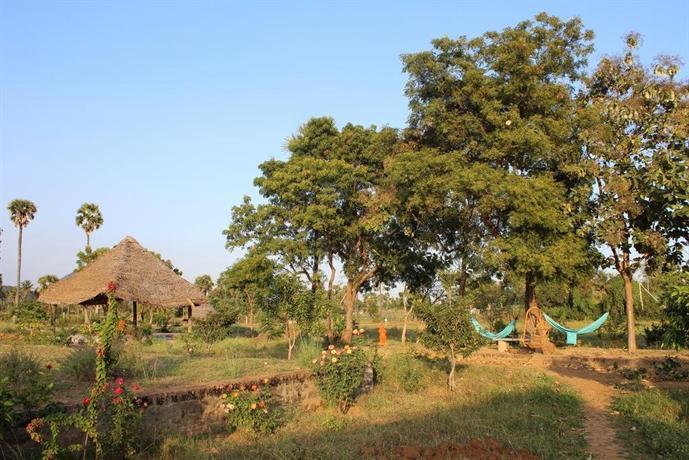 Ashok Tree Nature Resort
