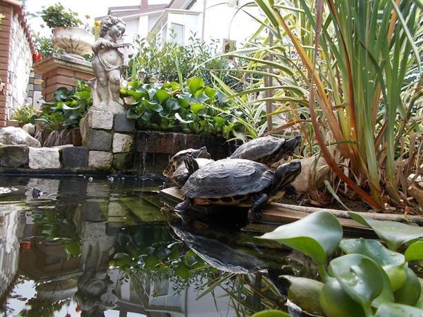 B b il giardino acquatico l 39 aquila compare deals for Il giardini