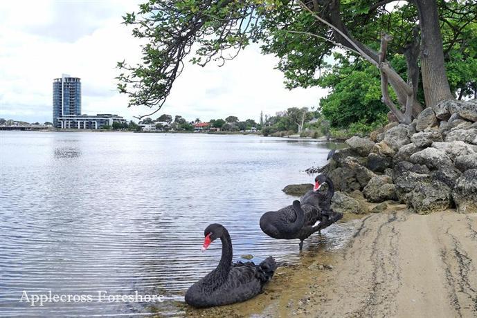 Swanriver Applecross Shortstays Perth Compare Deals