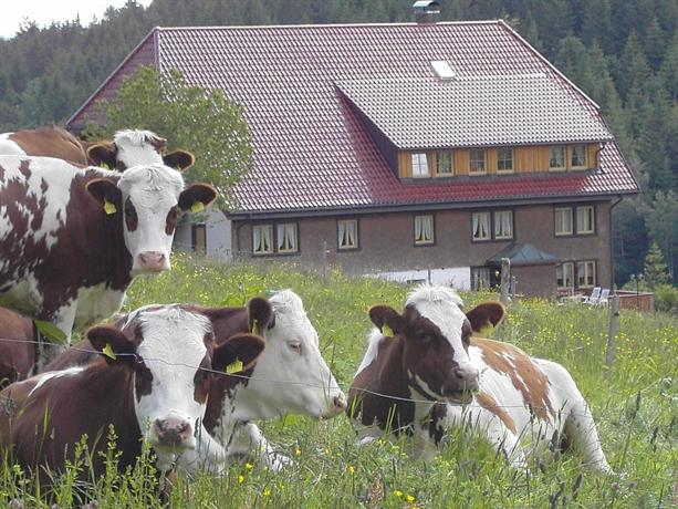 Haus am Berg Schonwald im Schwarzwald
