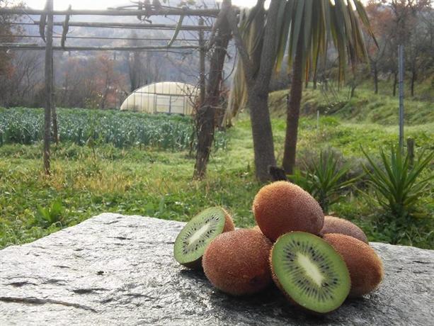 Il giardino del sole garlenda offerte in corso - Il giardino del sole ...