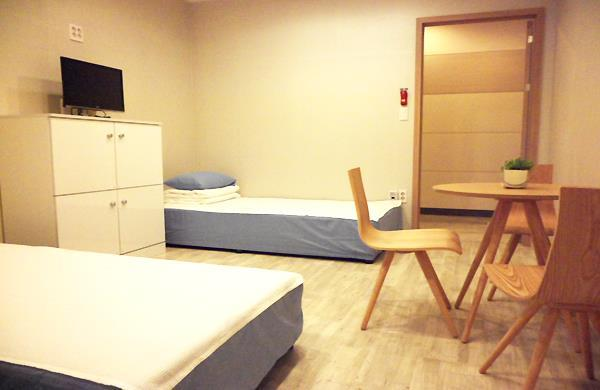 Hostel The New Day