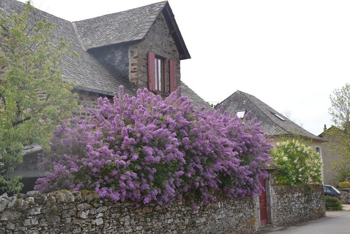 Chambre d 39 hotes les lilas sauveterre de rouergue for Chambre hote rodez