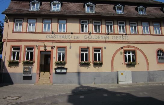 Hotel Goldene Gerste Frankfurt Main