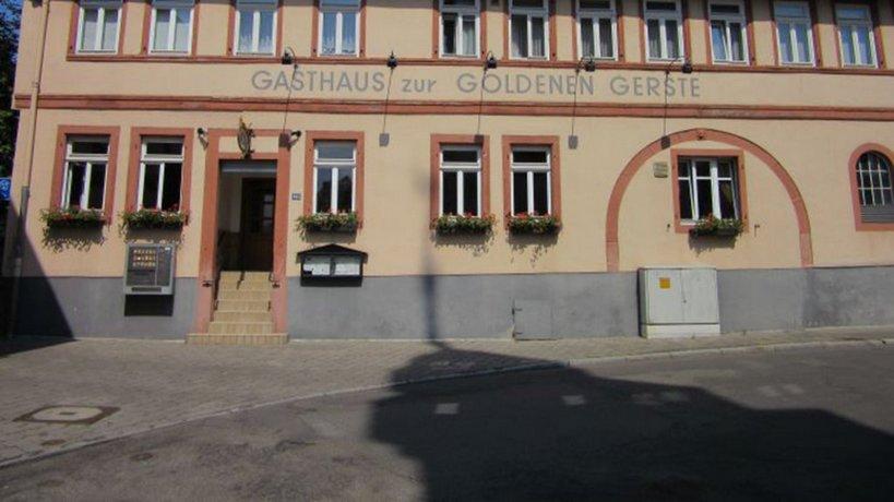 Goldene Gerste