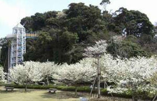 Hiratsuru