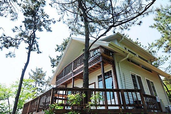 Find Hotel In Boseong Green Tea Field