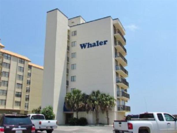 Whaler 4D