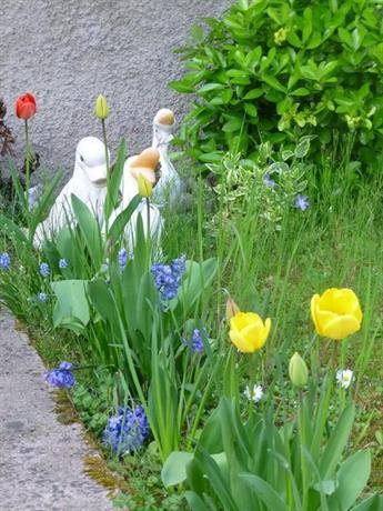 about jardin fleuri - Jardin Fleuri