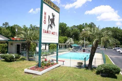 Bambi Motel - Gainesville