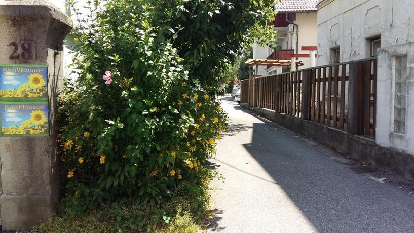 Sunflower Accommodation