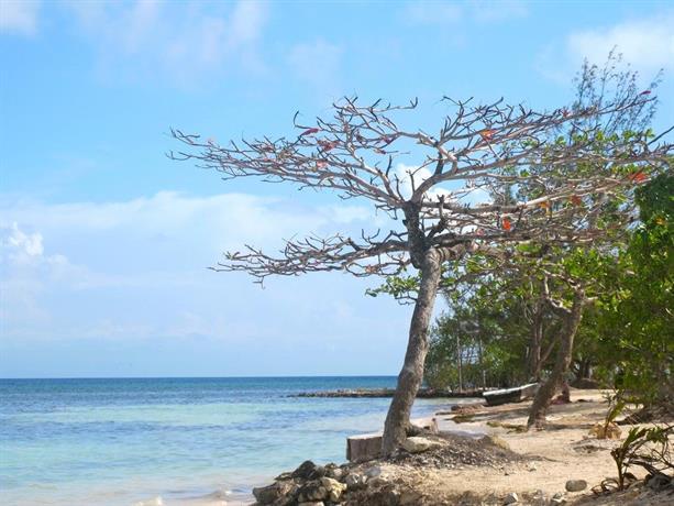 C View Beach Resort Utila Compare Deals
