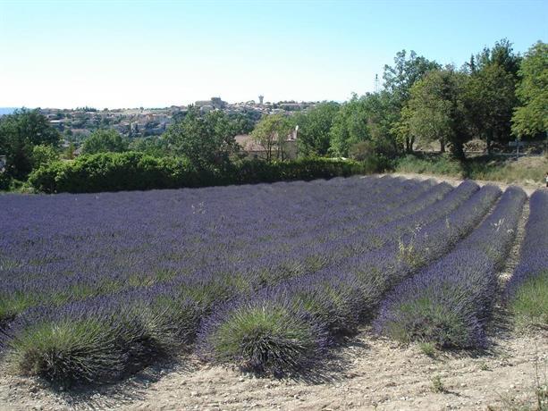Le Verdon De Castellane