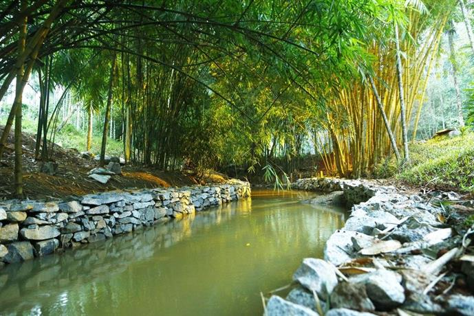 Bamboo Creek Resort