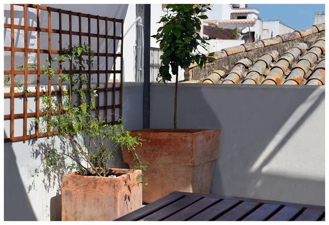Apartamentos Con Terraza Privada